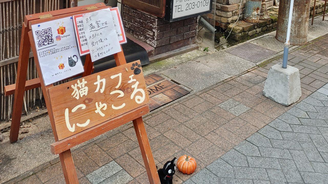 鹿児島の猫カフェ『にゃこる』で癒された・・・